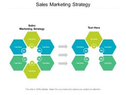 Sales Marketing Strategy Ppt Powerpoint Presentation File Professional Cpb