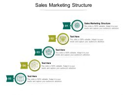 Sales Marketing Structure Ppt Powerpoint Presentation Portfolio Infographics Cpb