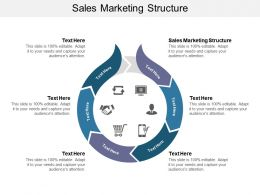 Sales Marketing Structure Ppt Powerpoint Presentation Slides Graphics Tutorials Cpb