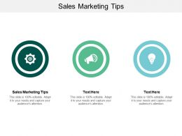 Sales Marketing Tips Ppt Powerpoint Presentation Ideas Smartart Cpb