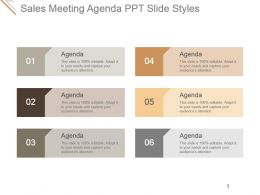 Sales Meeting Agenda Ppt Slide Styles