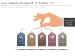 Sales Operation Assessment Ppt Example File