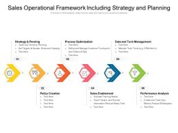 Sales Operational Framework Including Strategy And Planning