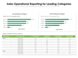 Sales Operational Reporting For Leading Categories