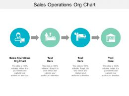 Sales Operations Org Chart Ppt Powerpoint Presentation Model Good Cpb