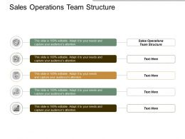 Sales Operations Team Structure Ppt Powerpoint Presentation Guidelines Cpb
