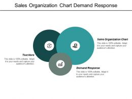 Sales Organization Chart Demand Response Leadership Team Building Cpb