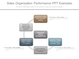 Sales Organization Performance Ppt Examples