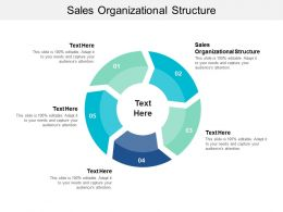 Sales Organizational Structure Ppt Powerpoint Presentation Slides Layouts Cpb