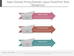 sales_oriented_pricing_example_layout_powerpoint_slide_background_Slide01