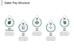 Sales Pay Structure Ppt Powerpoint Presentation Infographics Example File Cpb