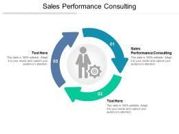 Sales Performance Consulting Ppt Powerpoint Presentation Example File Cpb