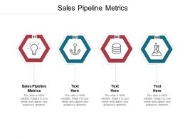 Sales Pipeline Metrics Ppt Powerpoint Presentation Infographic Template Skills Cpb