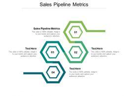 Sales Pipeline Metrics Ppt Powerpoint Presentation Outline Sample Cpb