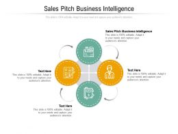 Sales Pitch Business Intelligence Ppt Powerpoint Presentation Infographics Icons Cpb