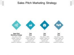 Sales Pitch Marketing Strategy Ppt Powerpoint Presentation Portfolio Diagrams Cpb