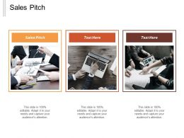 Sales Pitch Ppt Powerpoint Presentation Gallery Templates Cpb