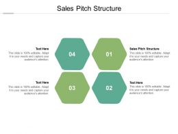 Sales Pitch Structure Ppt Powerpoint Presentation Slides Cpb