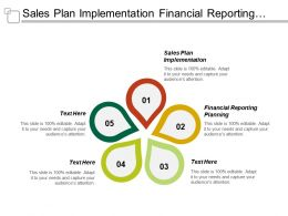 Sales Plan Implementation Financial Reporting Planning Project Management Process