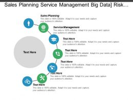 Sales Planning Service Management Big Data Risk Management Cpb