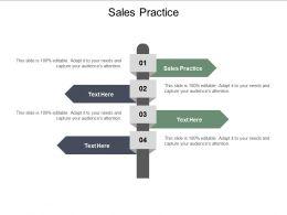 Sales Practice Ppt Powerpoint Presentation Portfolio Cpb
