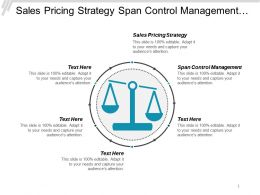 Sales Pricing Strategy Span Control Management Transformation Marketing Cpb