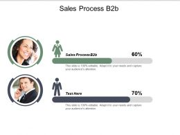 Sales Process B2b Ppt Powerpoint Presentation Model Graphics Template Cpb