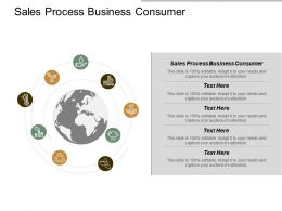 Sales Process Business Consumer Ppt Powerpoint Presentation Introduction Cpb