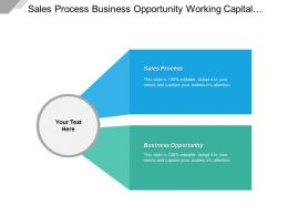 Sales Process Business Opportunity Working Capital Social Media Cpb