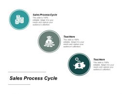 Sales Process Cycle Ppt Powerpoint Presentation File Format Ideas Cpb
