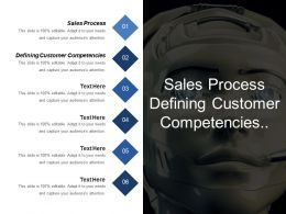 Sales Process Defining Customer Competencies Example Touch Point
