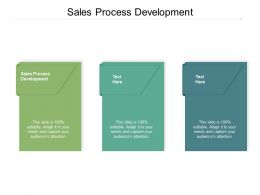 Sales Process Development Ppt Powerpoint Presentation Professional Examples Cpb