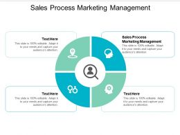 Sales Process Marketing Management Ppt Powerpoint Presentation Icon Examples Cpb