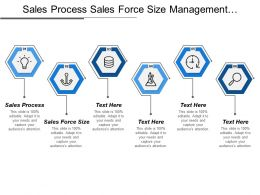 Sales Process Sales Force Size Management Support Committee