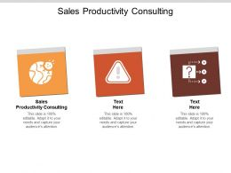 Sales Productivity Consulting Ppt Powerpoint Presentation Ideas Themes Cpb