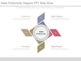 Sales Productivity Diagram Ppt Slide Show