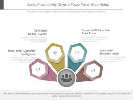 Sales Productivity Drivers Powerpoint Slide Rules