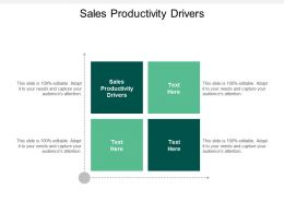 Sales Productivity Drivers Ppt Powerpoint Presentation Infographic Template Demonstration Cpb