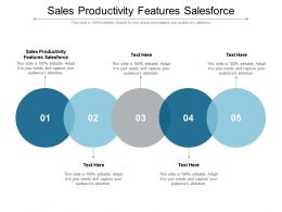 Sales Productivity Features Salesforce Ppt Powerpoint Presentation Images Cpb