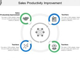 Sales Productivity Improvement Ppt Powerpoint Presentation Styles Example Cpb