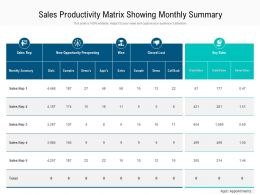 Sales Productivity Matrix Showing Monthly Summary