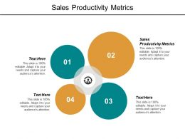 Sales Productivity Metrics Ppt Powerpoint Presentation File Maker Cpb