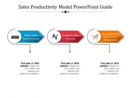 Sales Productivity Model Powerpoint Guide