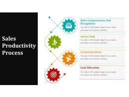 Sales Productivity Process Powerpoint Ideas