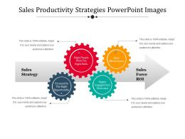 Sales Productivity Strategies Powerpoint Images