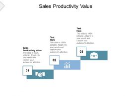 Sales Productivity Value Ppt Powerpoint Presentation Portfolio Show Cpb