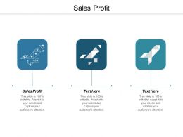 Sales Profit Ppt Powerpoint Presentation Infographic Template Sample Cpb