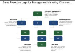 Sales Projection Logistics Management Marketing Channels Marketing Plan