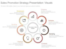 Sales Promotion Strategy Presentation Visuals
