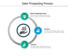 Sales Prospecting Process Ppt Powerpoint Presentation Outline Infographics Cpb